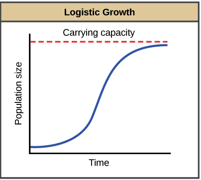 Population regulation article ecology khan academy logistic growth results in a curve that gets increasingly steep then levels off when the carrying capacity is reached resulting in an s shape publicscrutiny Gallery