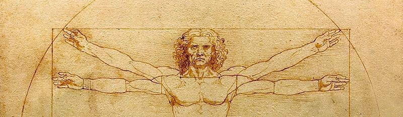 Leonardo, Vitruvian Man